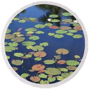 Lily Pads On Blue Pond Round Beach Towel