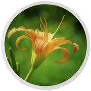 Lily Picture - Daylily Round Beach Towel