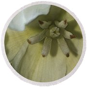 Lily Poster Round Beach Towel