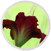 Lily Red On Green Round Beach Towel