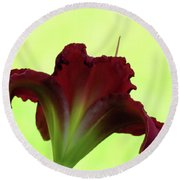 Lily Red On Yellow Green - Daylily Round Beach Towel