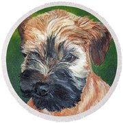 Lily, Soft Coated Wheaten Puppy Round Beach Towel