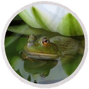Lilyfrog - Frog With Water Lily Round Beach Towel