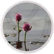 Lilypads And Wasps Round Beach Towel