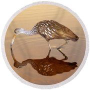 Limpkin In The Mirror Round Beach Towel
