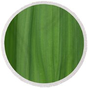 Lines Of A Leaf Round Beach Towel