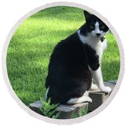 Lingering Lucy Round Beach Towel