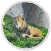 Lion At Leisure Round Beach Towel
