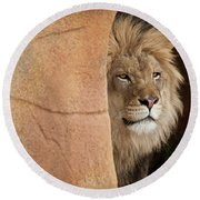Lion Emerging    Captive Round Beach Towel