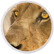 Lion Face Round Beach Towel