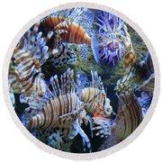 Lion Fish Round Beach Towel