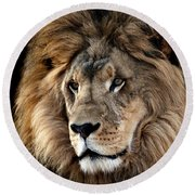 Lion King Of The Jungle 2 Round Beach Towel by James Sage