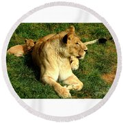 Lioness And Cub Round Beach Towel