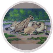 Lioness With Cubs Round Beach Towel
