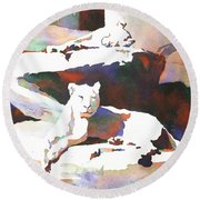 Lionesses At Zoo Round Beach Towel