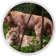 Lions Round Beach Towel