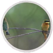 Little Bee-eaters Round Beach Towel