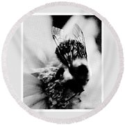 Little Bumble Bee Working For Dinner Round Beach Towel