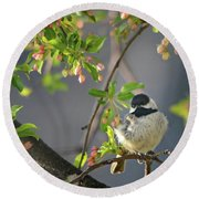 Little Chickadee In The Pink Round Beach Towel