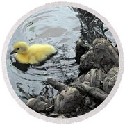 Little Ducky 2 Round Beach Towel by Angelina Vick