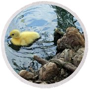 Little Ducky Round Beach Towel