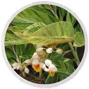 Little Flower In The Leaves II Round Beach Towel