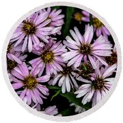 Little Green Bug Among The Flowers Round Beach Towel