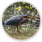 Little Green Heron With Fish Round Beach Towel