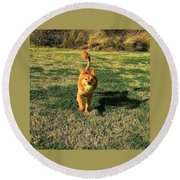 Little Lion Round Beach Towel