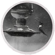 Little Male Hummingbird In Charcoal Round Beach Towel