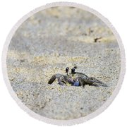 Little Nag's Head Crab Round Beach Towel