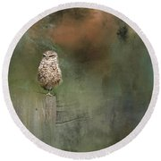 Little Owl On A Fence Round Beach Towel