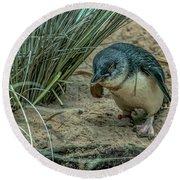 Little Penguin Round Beach Towel