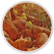 Little Pine Trees Growing On The Valley Cliffs Round Beach Towel