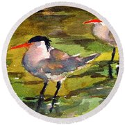 Little Terns Round Beach Towel