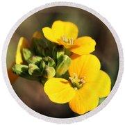 Little Yellow Flowers Round Beach Towel