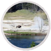 Live Dream Own Yellowstone Park Bison Text Round Beach Towel