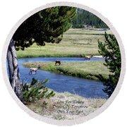 Live Dream Own Yellowstone Park Elk Herd Text Round Beach Towel