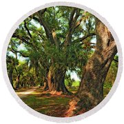 Live Oak Lane Round Beach Towel by Steve Harrington