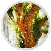 Live Oak With Cypress Beyond Round Beach Towel
