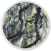 Live Oak With Spanish Moss And Palms Round Beach Towel