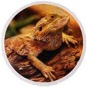 Lizard - Id 16217-202744-5164 Round Beach Towel