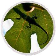 Lizard On A Fig Leaf Round Beach Towel