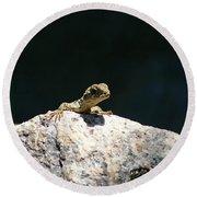 Lizard Rock Round Beach Towel