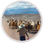 Llama Herd On Road Round Beach Towel