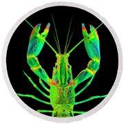 Lobster Crawfish In The Dark - Greenlime Round Beach Towel