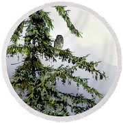 Lofty Perch Round Beach Towel