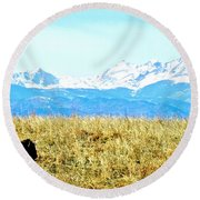 Lone Buffalo Watching The Rocky Mountains Round Beach Towel