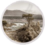 Lone Cypres Round Beach Towel