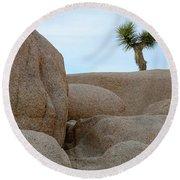 Lone Joshua Tree Round Beach Towel